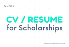Modern CV for Scholarship Applications