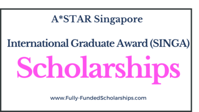 Singapore International Graduate Award (SINGA) Scholarships 2022-2023