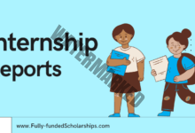 Internship Reports Writing with Example Internship Report Format, Outline & Sample